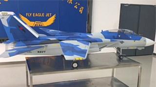 飞鹰F14涡喷模型飞机机翼开合演示
